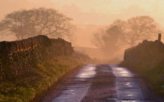 дорога, wet, rural, природа, incredible, moneta, туман, утро,