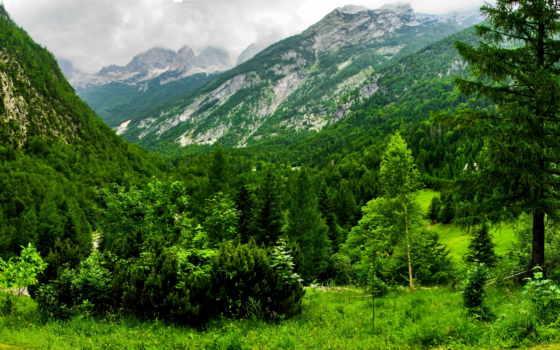 slovenia, словении, лес, kugy, разных, весна, bovec, природы, разрешениях, пейзажи -, горы,