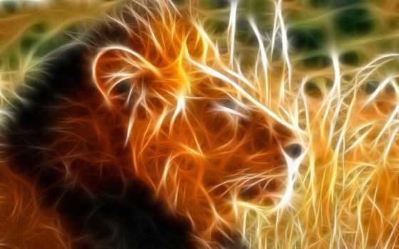 lion, львы, zhivotnye, animals, кошки, большие, фотографе, лео, дротик,