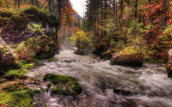 пейзажи -, горы, красивые, страница, леса, часть, reki, rylik, природа, margin, гор,