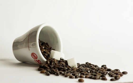 coffee, cubes, ecran, fond, чая, bags, pantalla, gratis, cubos,
