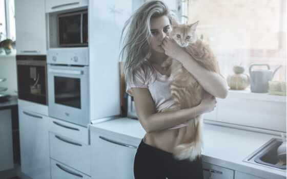 женщина, александр, кот, blonde, belavin, модель, смотреть, viewer, стерва, девушка