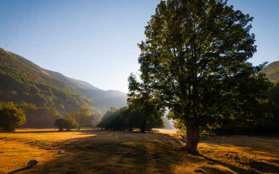 природа, лето Фон № 31915 разрешение 1920x1080