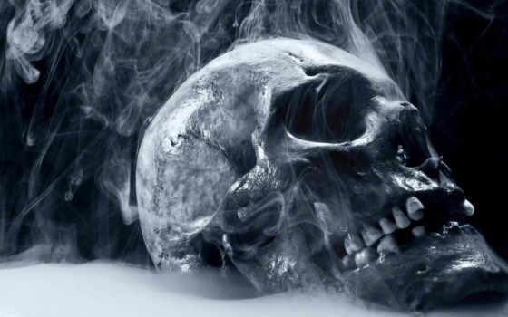 смерть, skull, smoking, спустя, годы, лишь, янв, разное, настоящую, обнародовали, dark, дым, смерти, причину,