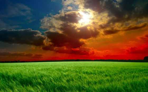 закат, поле, sun, небо, облака, тучи, лучи, разделе,