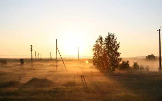 природа, russian, поле, рассвет, туман, утро, дерево,