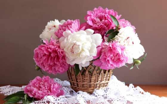 cvety, пионы, салфетка, корзина,