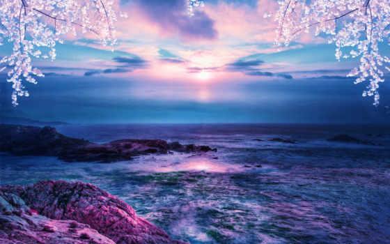 море, закат, landscape, природа, скалы, ветки, sun, коллекция, цветущие, сакуры,