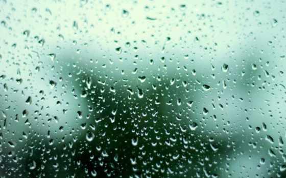 девушка, glass, капли, дождь, water, весна, зонтик, пушистик, грусть,
