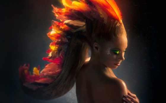 phoenix, pinterest, взлёт, об, more, see, birds, aaron, nace,