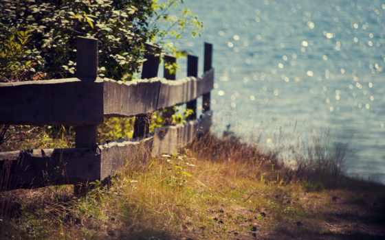 природа, summer, забор, растения, боке, свет, cvety,
