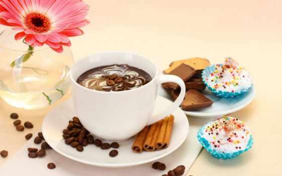 coffee, cup, десерт, еда, торт, gerbera, cvety,