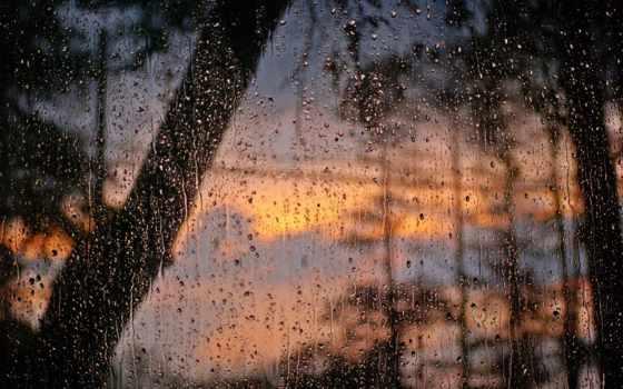 дождя, окно