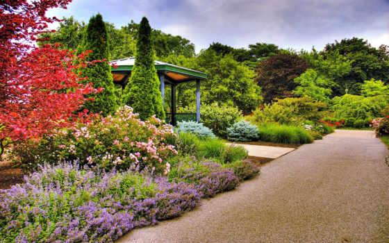 garden, природа, design