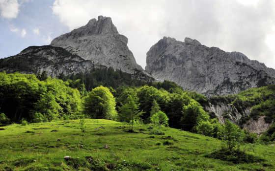 природа, трава, austrian, картинку, pin, небо, горы, trees, landscape, город,