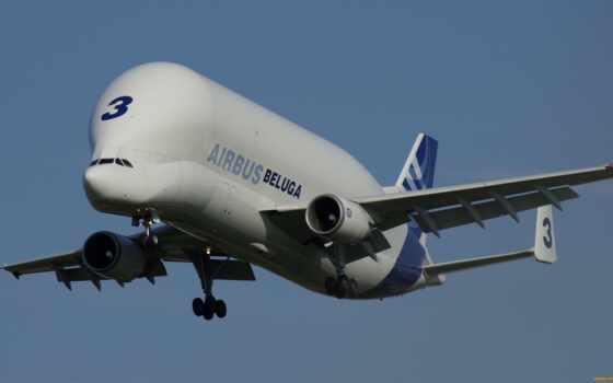 самолёт, белуга