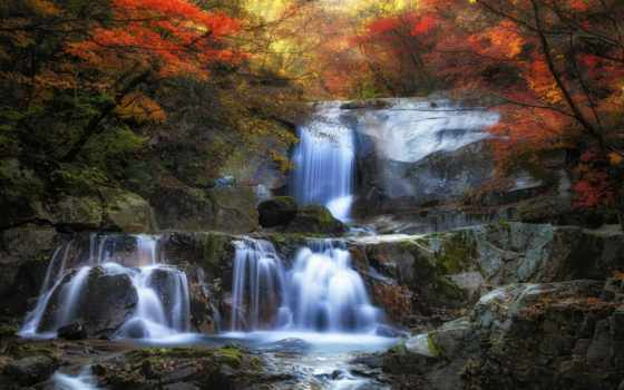природа, водопад, landscape, colorful, листья, лес, abyss, пасть, trees, мох
