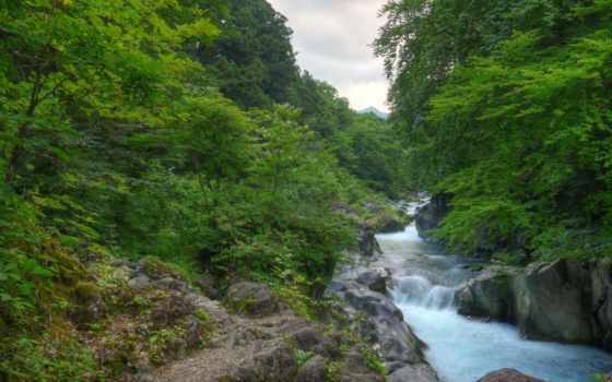 картинка, изображение, япония, леса, природа, desktop, free, фото, река, тематика,