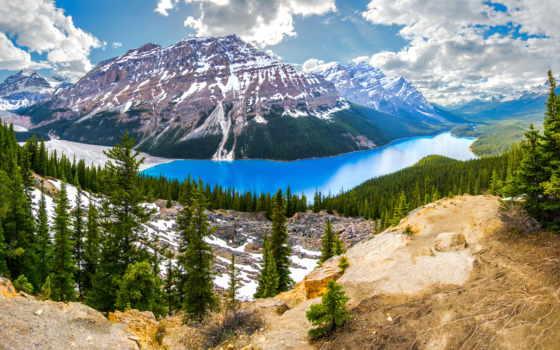озеро, peyto, канадский, горы, канада, природа, banff, landscape, ёль, парки,