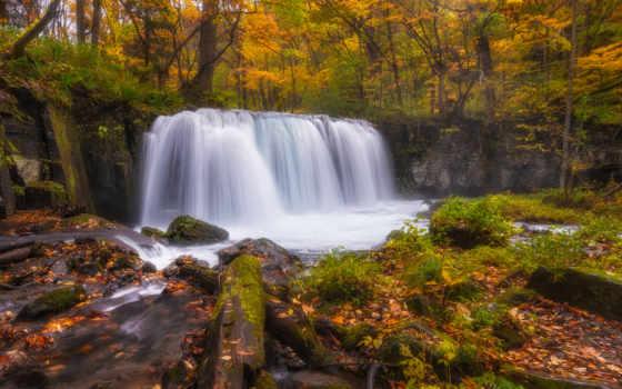 плачущий, осени, яndex, водопады, лес, леса, лесные, природа, картины, коллекциях,