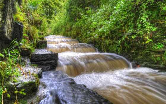 tributary, лист, ветра, дышать, осень, nezametnyi, trees, палуба, park, река