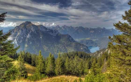 хвойный, лес, природа, landscape, девушек, подборка, красивых, height,