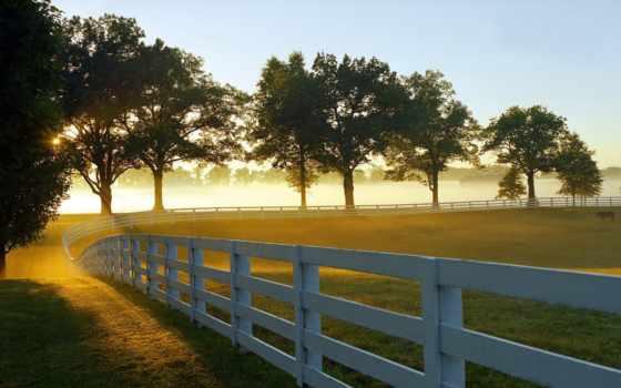 ranch, desktop, утро, free, montana, загон, full, roundup,
