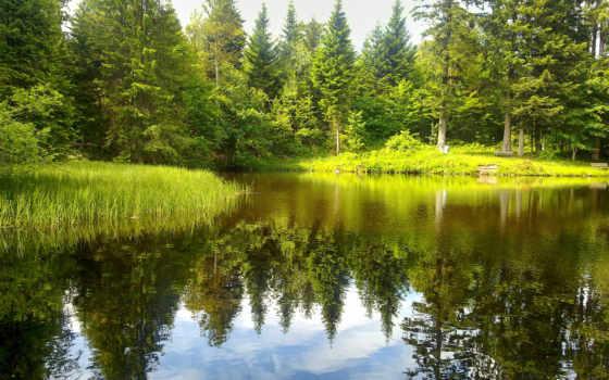природа, озеро, река, природы, landscape, красивые, sun, reki, леса, поле, лес,