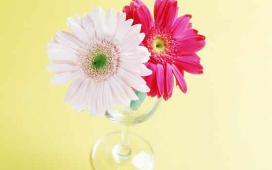 цветы, большая, живопись