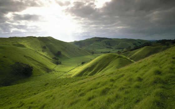 hill, трава, greenery, небо, поле, new, zealand, природа, луг, landscape, дерево