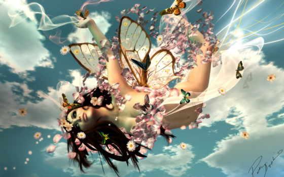 бабочки, фея