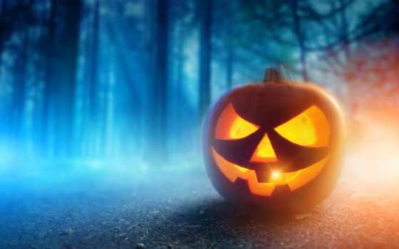 halloween, тыква, тыквы, осень, ночь,