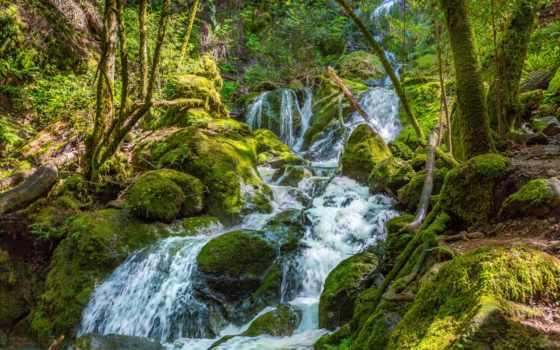 водопады, природа, ручей, мох, картинка, ворошить, птичий, кухни, уровни, фотопанно, фотообои,