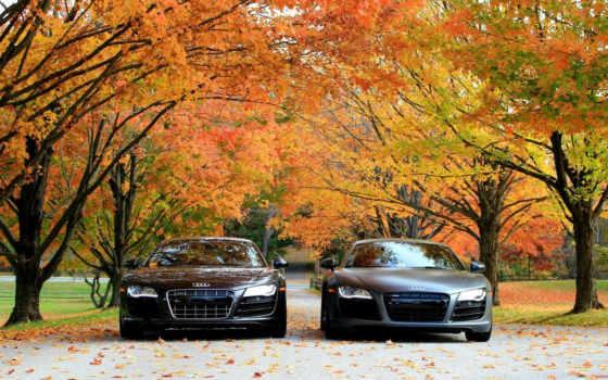 ауди, осень, машины