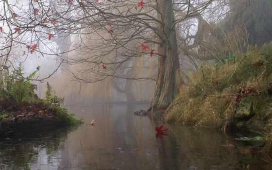 осень, дерево, живопись, туман, art, природа, water, trees, листва