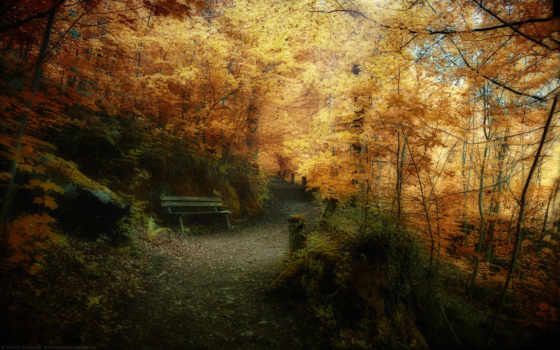 осень, природа, флот