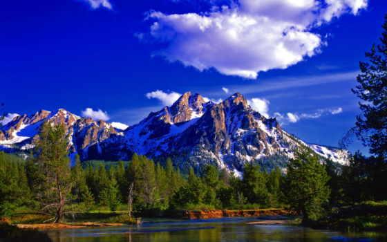 красивые, природа, природы, горы, найти, лес, со, мост, горах,