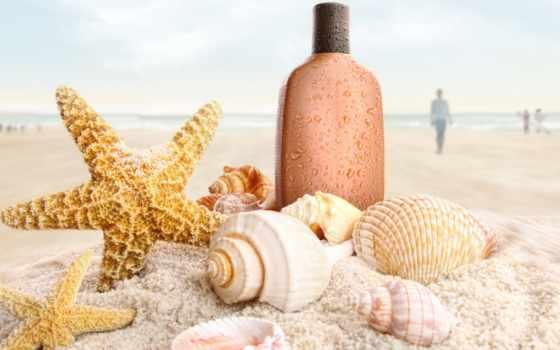 пляж, песок, ракушки, морские, звезды, раковины, широкоформатные, море, star, морская,