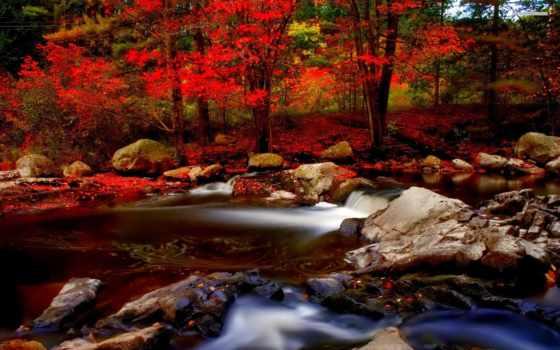 река, осень, лес Фон № 147746 разрешение 1920x1200