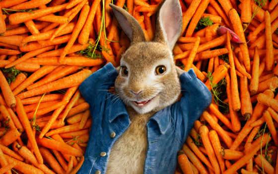 peter, кролик, сниматься, movie, смотреть, posters, online, фильмы,