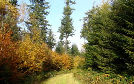 пейзажи -, природы, природа