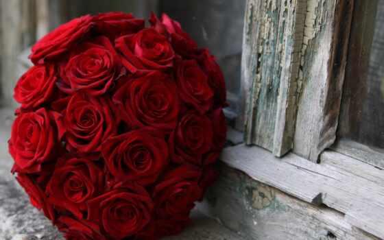 букет, роза, взлёт, red, красное, wed, rouge, окно