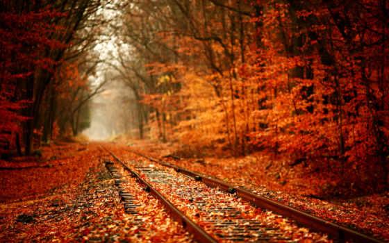 , railroad, landscape,