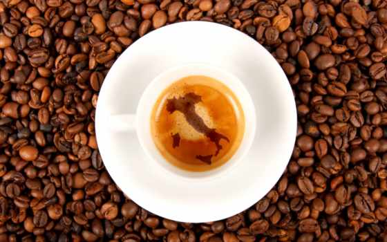 coffee, caffè, гаити, per, royal, voyage, bacardi, our, torrefazione,