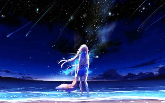 небо, девушка, anime, ночь, смотрит, shared, folder, звезды, amino,
