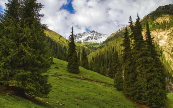 горы, ёль, природа, landscape, арашан, алтын, ущелье, кыргыстан,