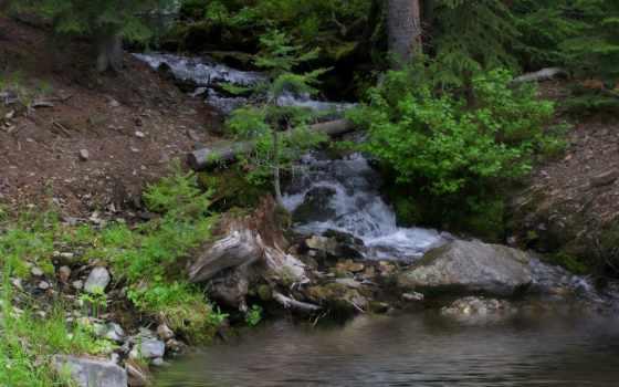 tapety, potok, krzewy, kamienie, górski, las, pulpit, фон, deviantart,