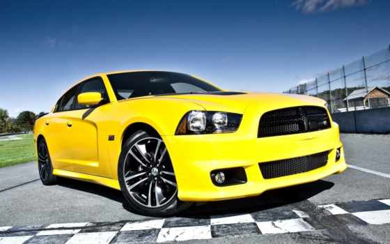 dodge, srt, charger, супер, пчелка, challenger, yellow, кофта, car,