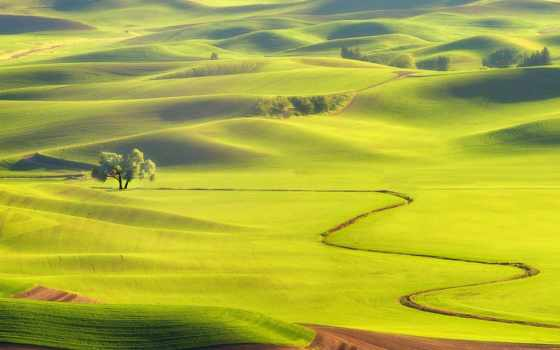 поле, дымка, трава, телефон, trees, mobile, небо, hills, природа, долины,