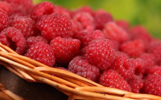 малина, ягоды, макро, корзина, вкусно,